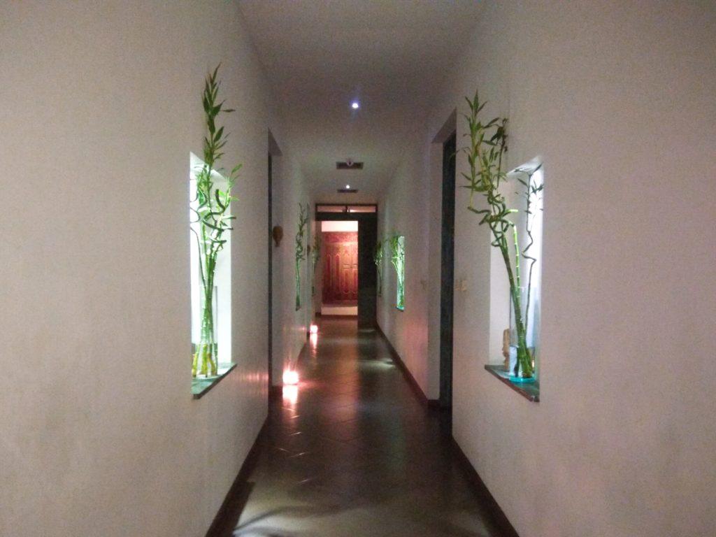 Cozy 廊下