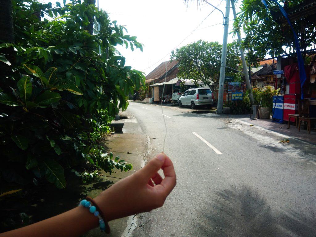 バリ島在住者あるある、タコ糸ぶら下がり