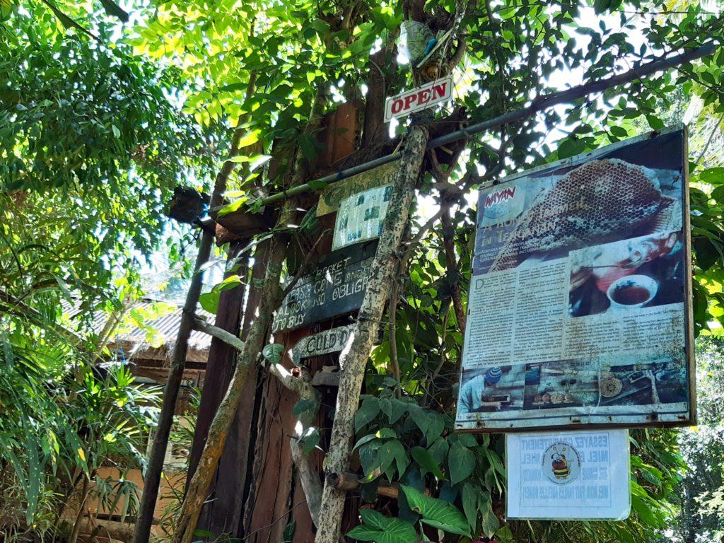 バリ島穴場の観光地バリ・アガの村トゥガナン村のはちみつ