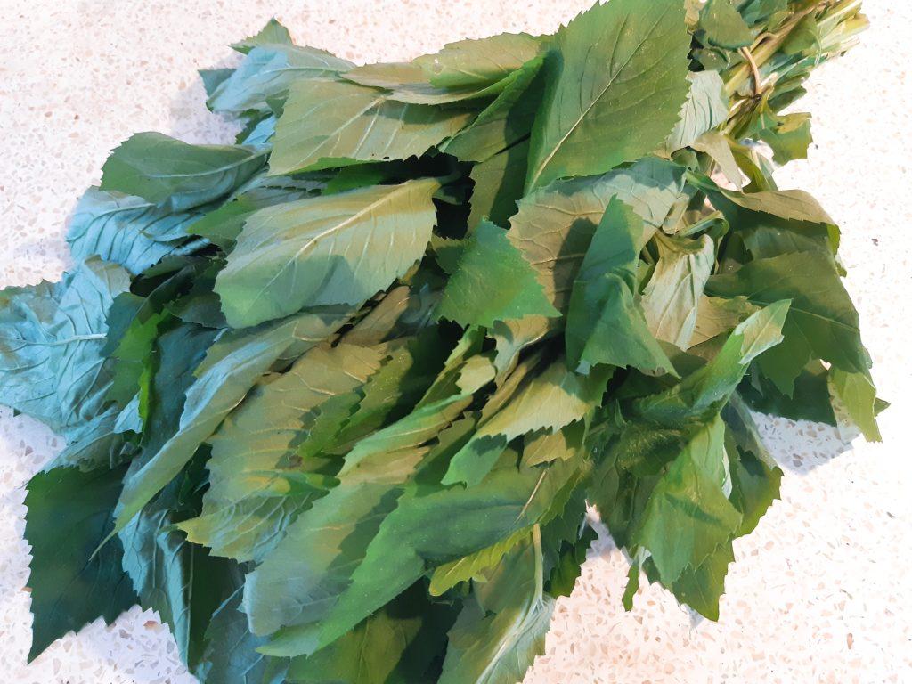 サユールウラップの野菜、ベニバナボロギク(Kejompot)