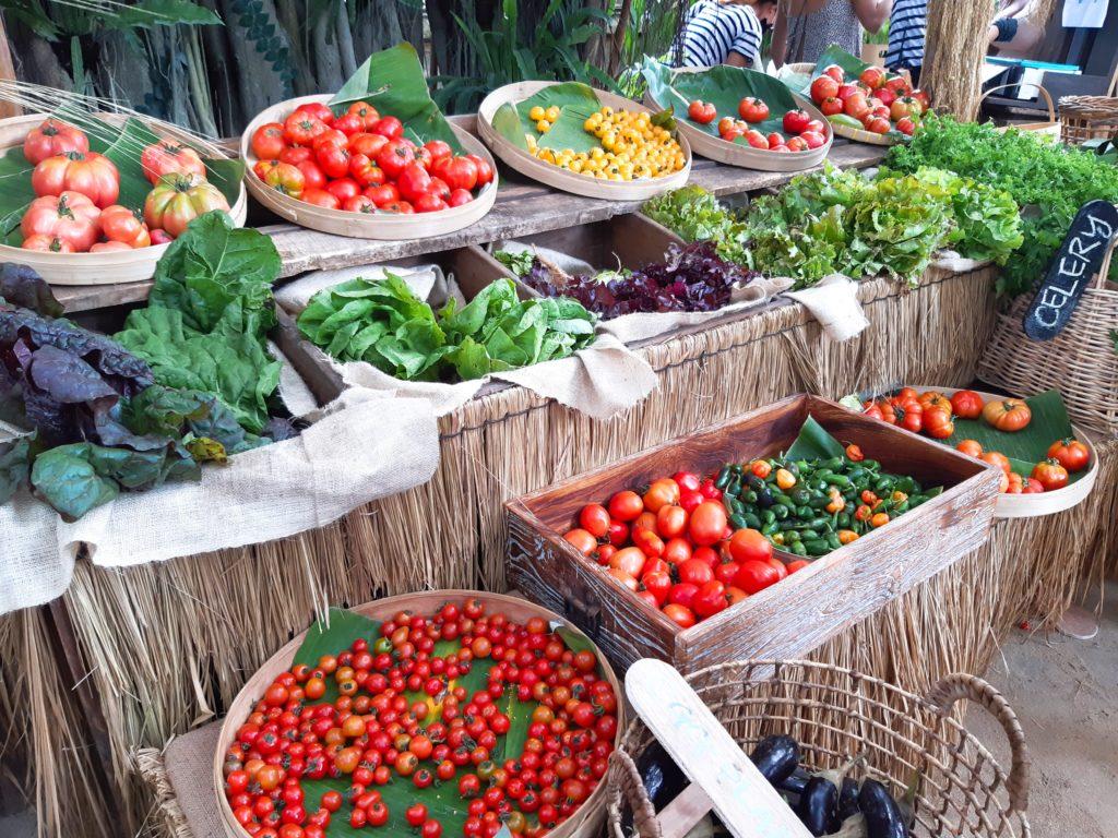 バリ島チャングービーチクラブLaBrisaのオーガニック野菜