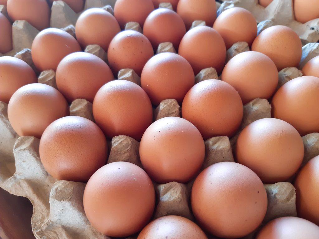 ワヤンさんの生食可能卵